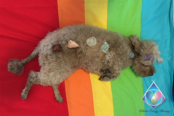 Eclectic Energy Therapy - Crystal Therapy for Pets